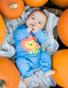 Top 5 Tips for taking Fall Pumpkin Patch Photos