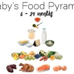 What to Feed your 6 Month Old - A complete plan