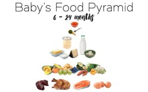 Best Guide to Feeding your 6 Month Old