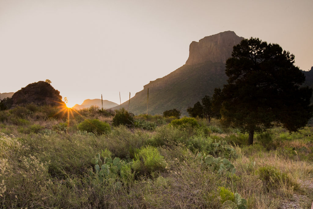 Things to do one a Big Bend Family Vacation with a Toddler in Spring Summer - May 2019