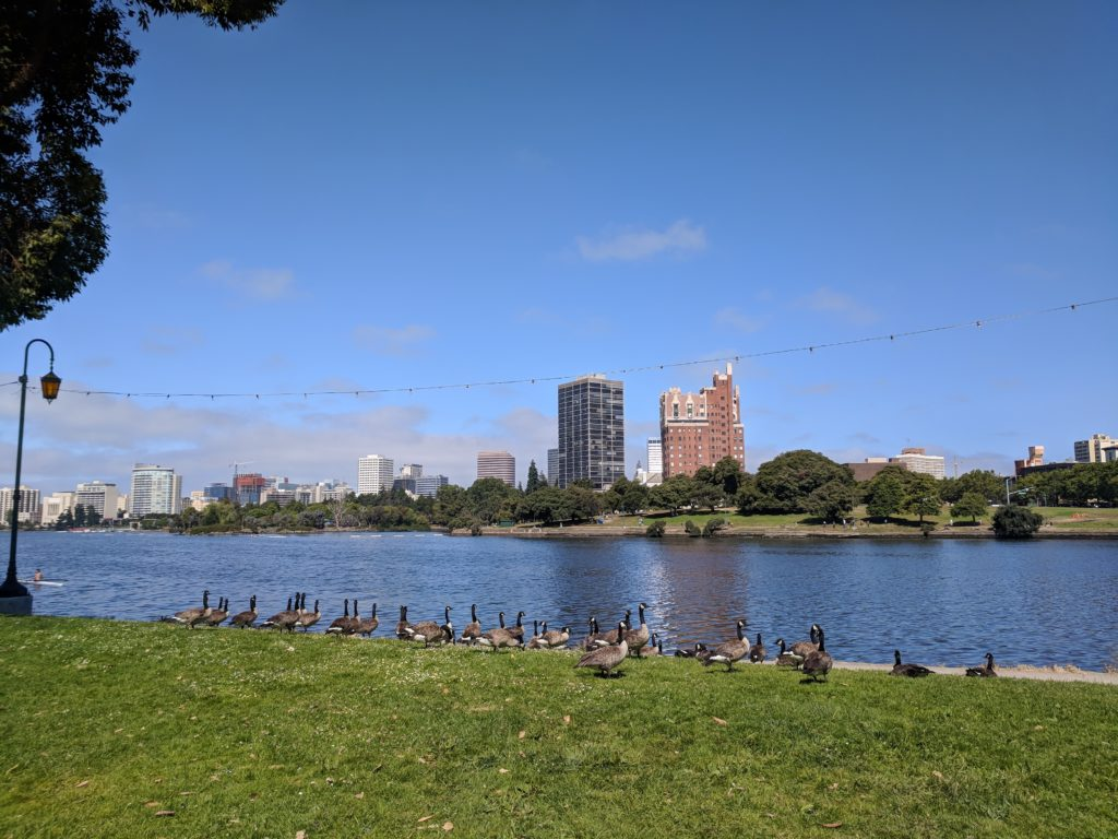 Visiting Oakland, CA California with a Toddler - Tilden Farm, Fairyland, Lake Merritt, San Francisco Ferry